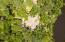 2447 The Bent Twig, Seabrook Island, SC 29455