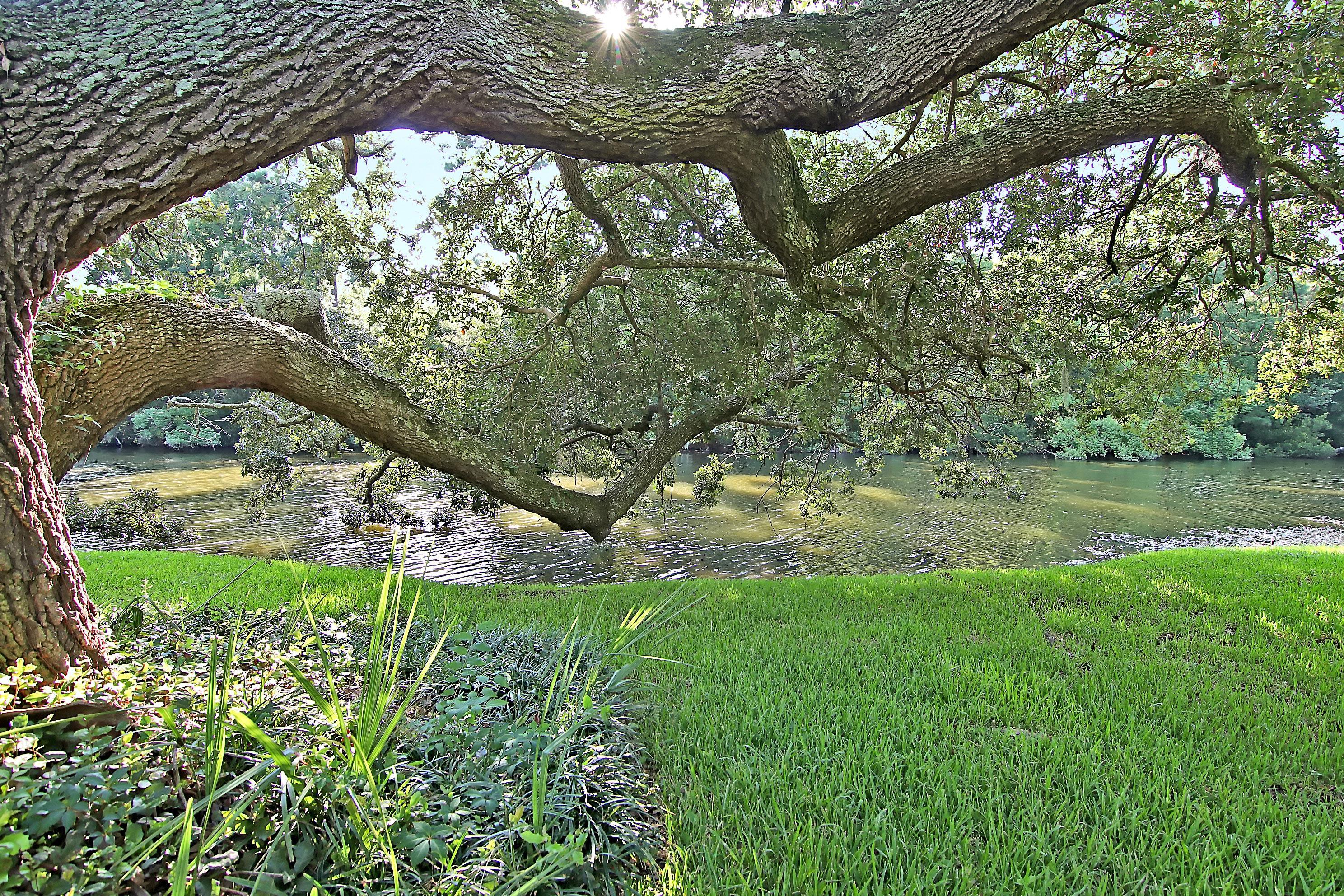Snee Farm Homes For Sale - 913 Austin, Mount Pleasant, SC - 31
