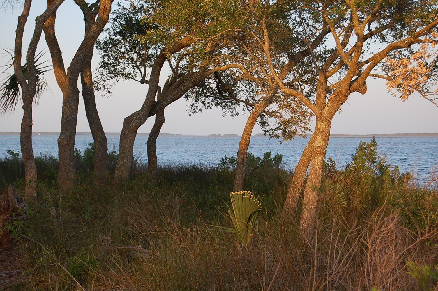 Hamlin Plantation Homes For Sale - 3000 Intracoastal View, Mount Pleasant, SC - 35