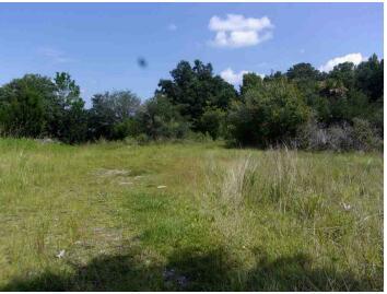 328 Maggie Road Mount Pleasant, SC 29464