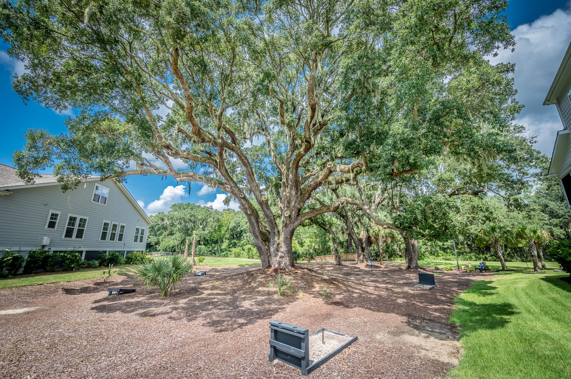Oyster Point Homes For Sale - 1516 Fort Palmetto Circle, Mount Pleasant, SC - 29