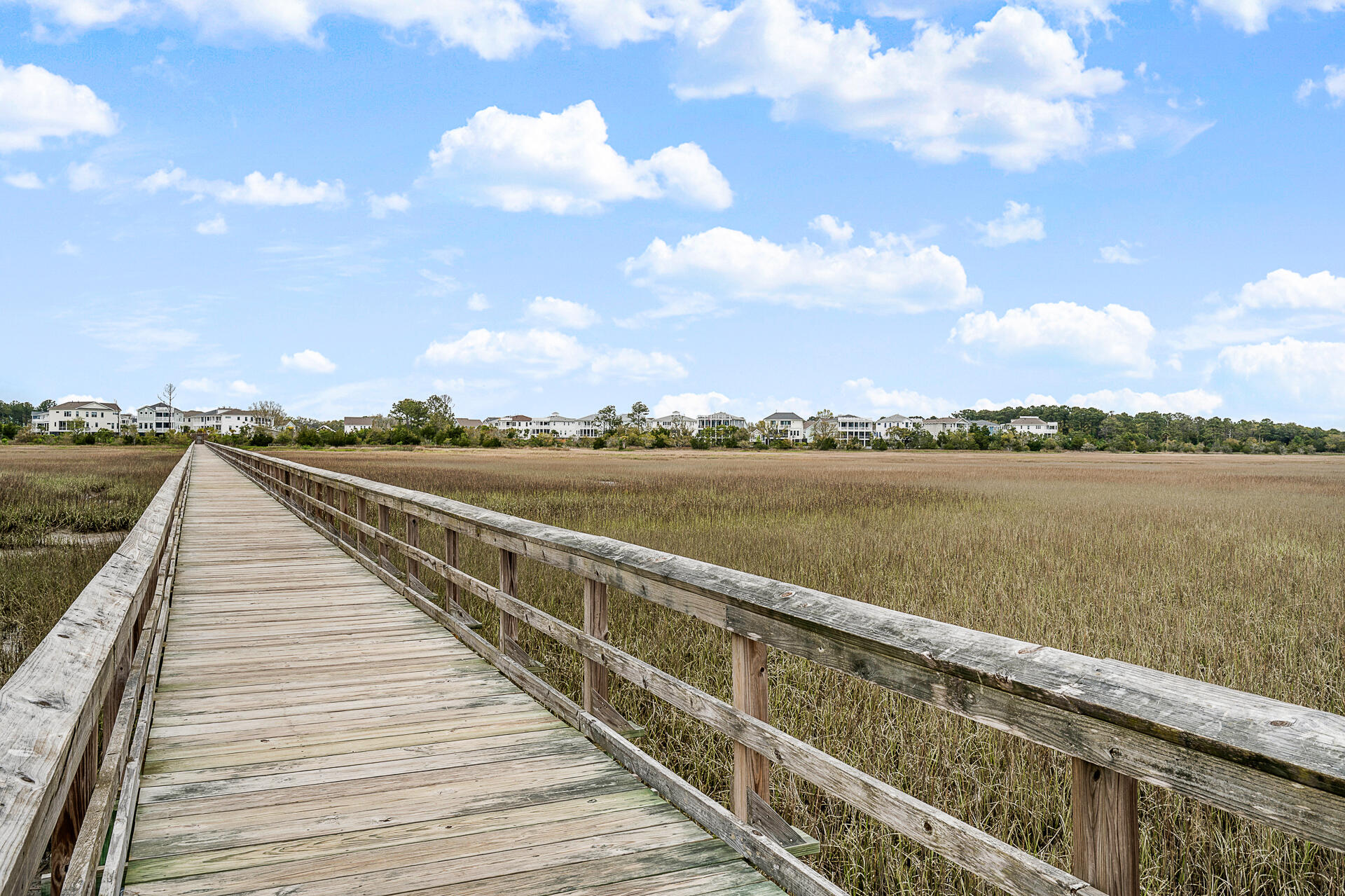 Oyster Point Homes For Sale - 1516 Fort Palmetto Circle, Mount Pleasant, SC - 24