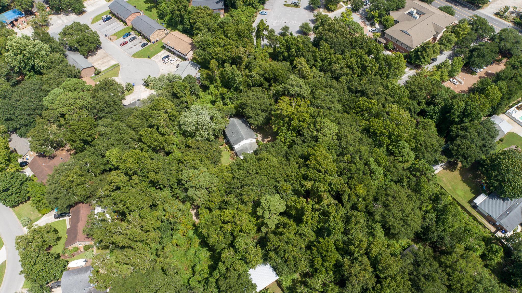 None Homes For Sale - 1110 Chuck Dawley, Mount Pleasant, SC - 40