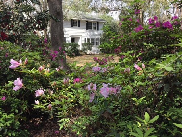 None Homes For Sale - 1110 Chuck Dawley, Mount Pleasant, SC - 35