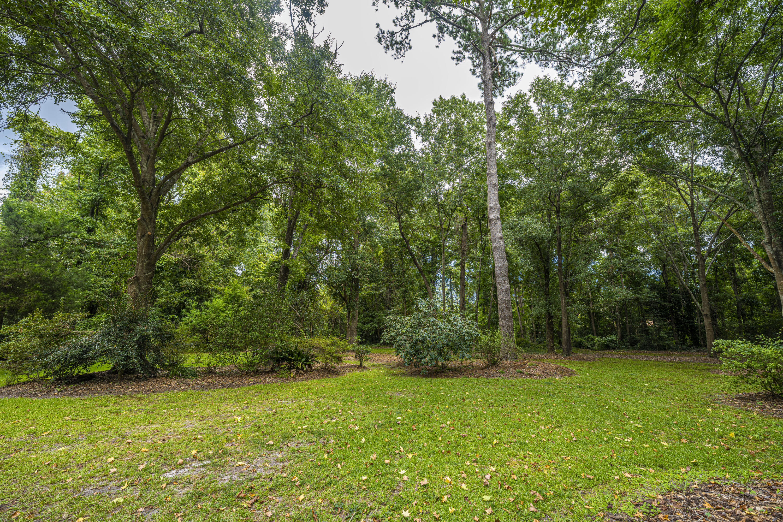 None Homes For Sale - 1110 Chuck Dawley, Mount Pleasant, SC - 43
