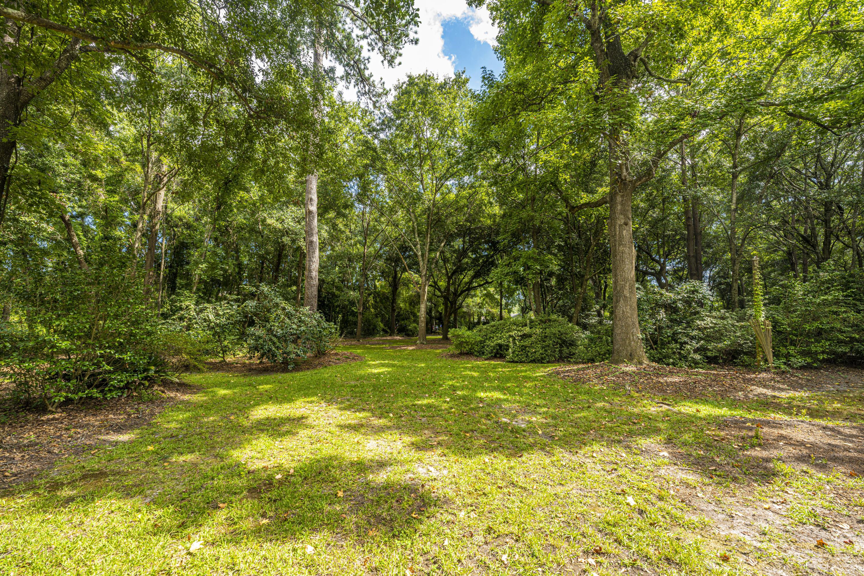 None Homes For Sale - 1110 Chuck Dawley, Mount Pleasant, SC - 42