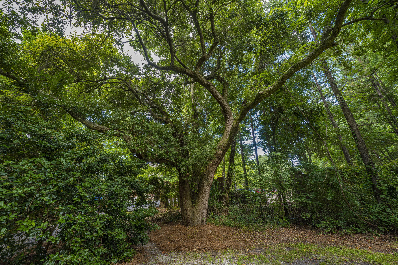 None Homes For Sale - 1110 Chuck Dawley, Mount Pleasant, SC - 41