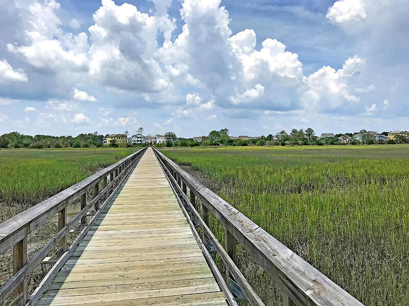 Oyster Point Homes For Sale - 1568 Prince Edward, Mount Pleasant, SC - 58