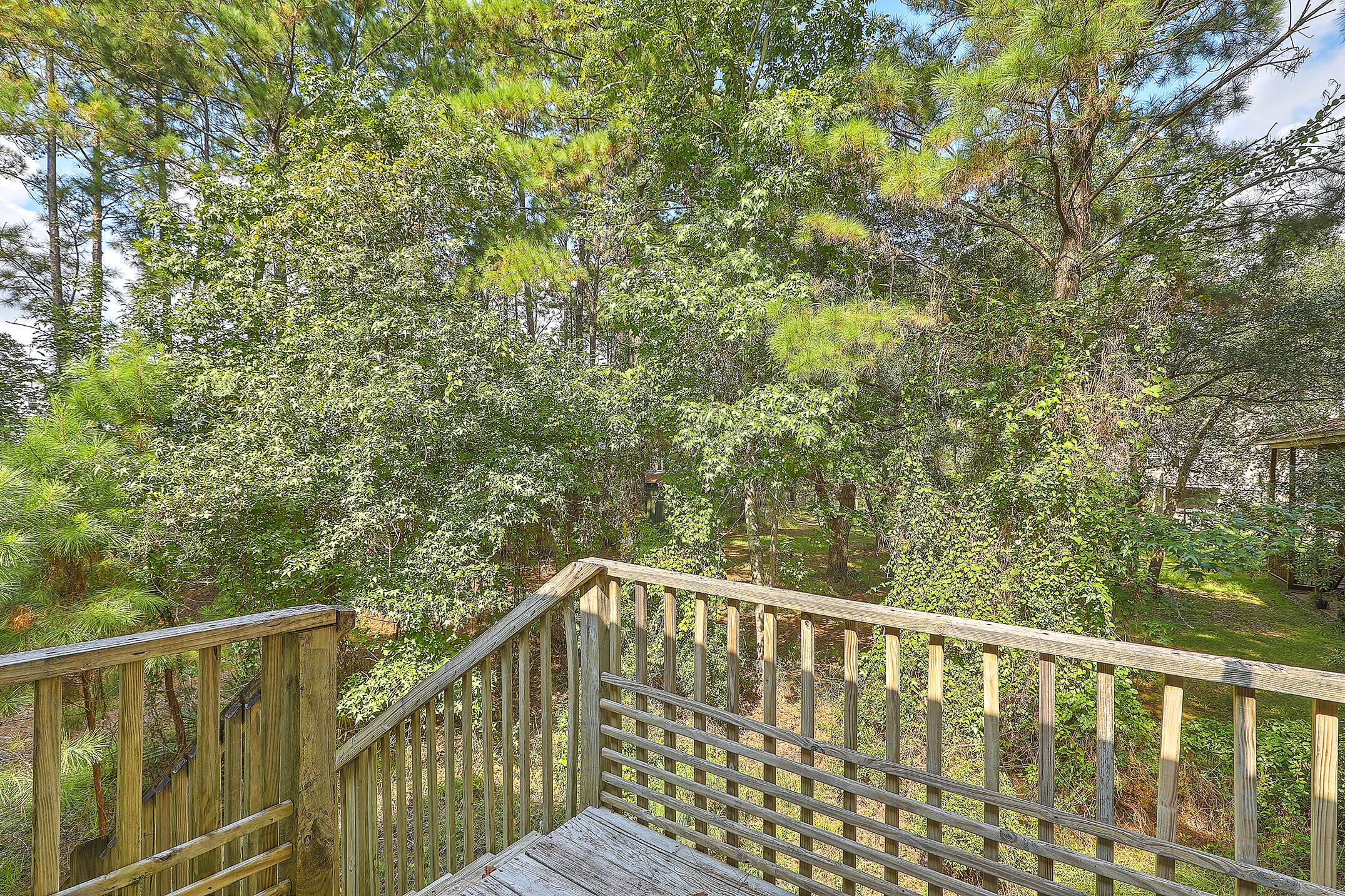 Copahee View Homes For Sale - 1588 Macoma, Mount Pleasant, SC - 9