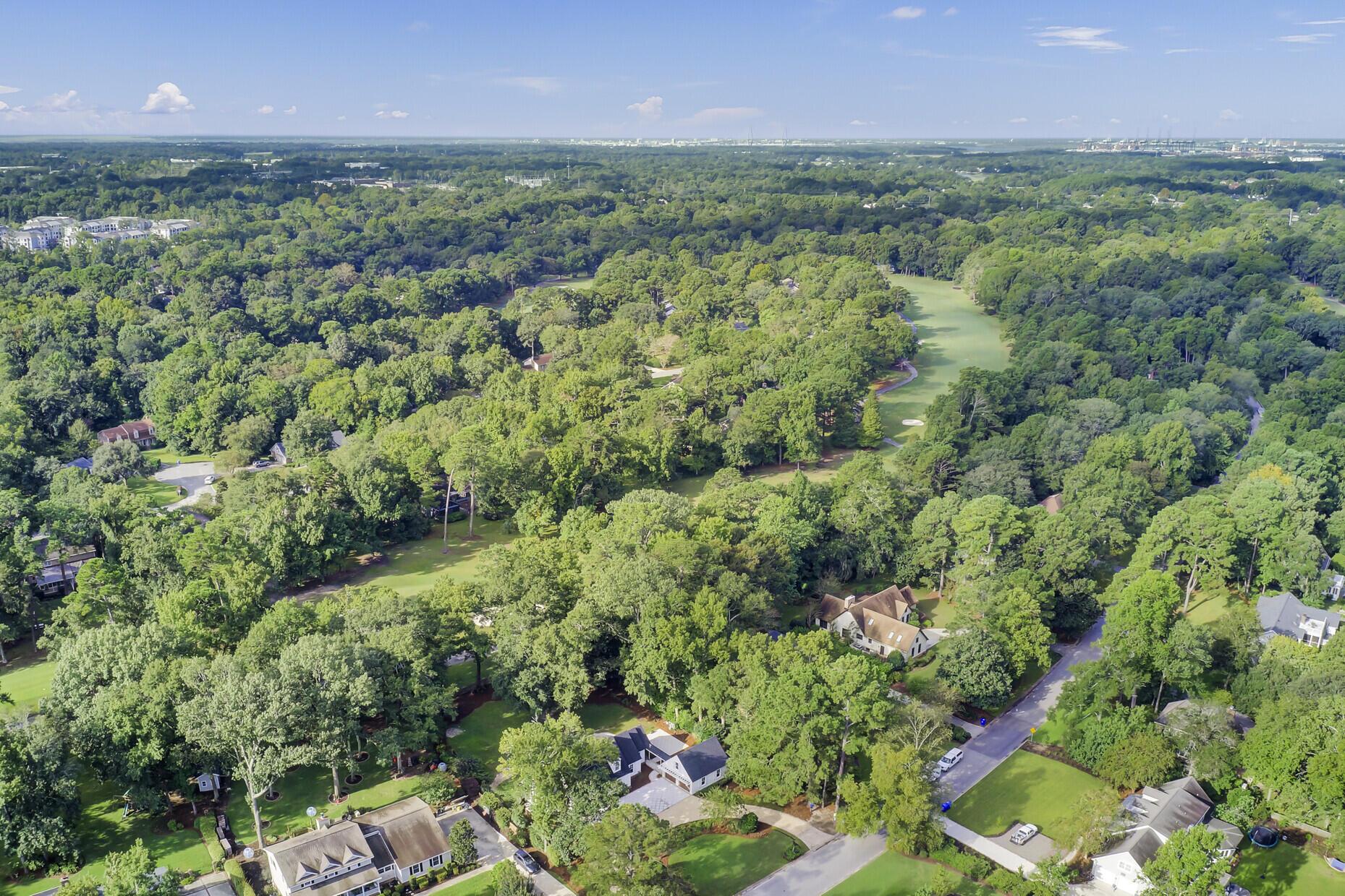 Snee Farm Homes For Sale - 1129 Deleisseline, Mount Pleasant, SC - 19