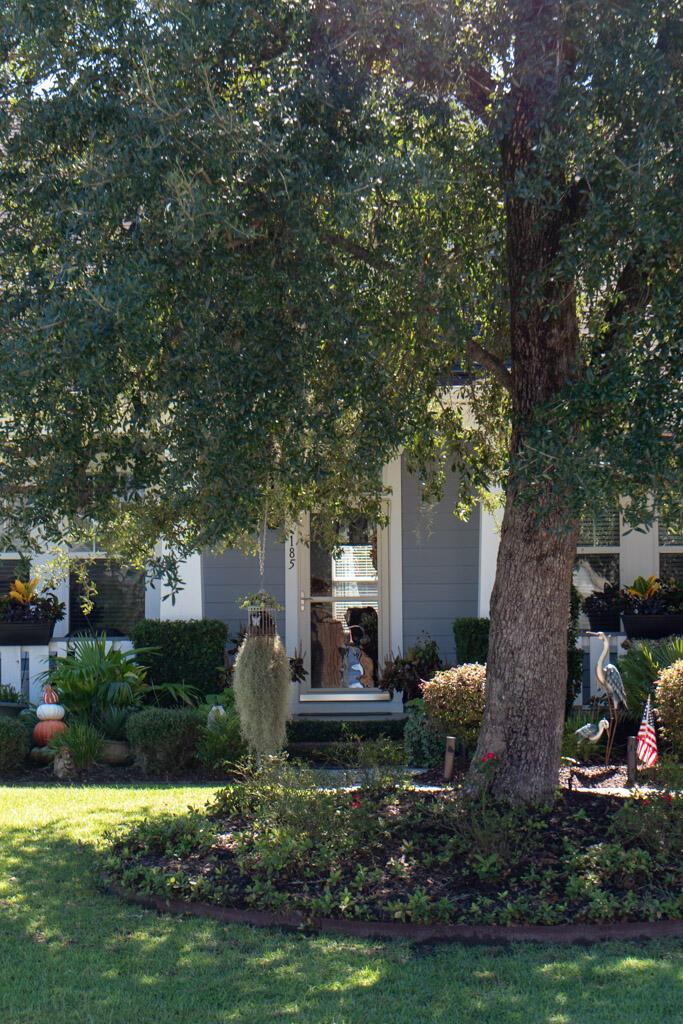185 Red Leaf Boulevard Moncks Corner, SC 29461