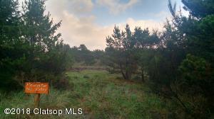 Lot 24 Horizon Hills, Warrenton, OR 97146