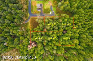 Raven Hill Rd. - Lot #2, Arch Cape, OR 97102