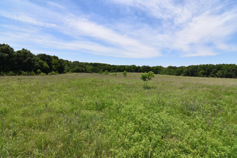 Farm/Ranch/Land for sale –   Hwy NN   Bosworth, MO