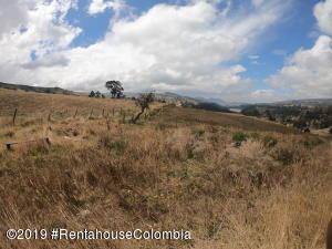 Terreno En Ventaen Bogota, Tunjuelito Usme, Colombia, CO RAH: 19-744