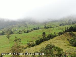 Terreno En Ventaen Pacho, Vereda Monte Verde, Colombia, CO RAH: 19-911