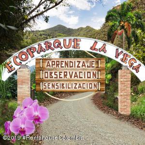 Terreno En Ventaen La Vega, Vereda Hoya Grande, Colombia, CO RAH: 19-937