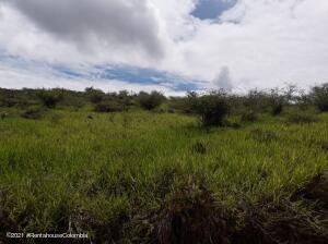 Terreno En Ventaen Piedecuesta, Vereda Las Llanadas, Colombia, CO RAH: 22-1100