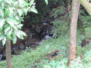 Terreno En Ventaen Altos Paloma, Santa Ana, Costa Rica, CR RAH: 17-648