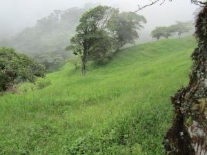 Terreno En Ventaen San Luis, Alfaro Ruiz, Costa Rica, CR RAH: 17-737