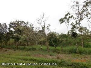 Terreno En Ventaen San Ramon, San Ramon, Costa Rica, CR RAH: 17-984