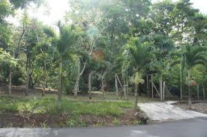 Terreno En Ventaen Orotina, Orotina, Costa Rica, CR RAH: 18-26