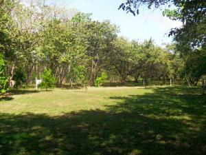 Terreno En Ventaen Sardinal, Carrillo, Costa Rica, CR RAH: 18-43