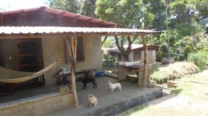 Terreno En Ventaen Cirri, Naranjo, Costa Rica, CR RAH: 18-151