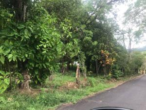 Terreno En Ventaen Alajuela, San Mateo, Costa Rica, CR RAH: 18-266