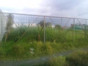 Terreno En Ventaen San Isidro, Vazquez De Coronado, Costa Rica, CR RAH: 18-348