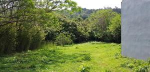 Terreno En Ventaen Rio Oro, Santa Ana, Costa Rica, CR RAH: 18-398