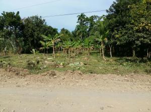 Terreno En Ventaen Sarapiqui, Sarapiqui, Costa Rica, CR RAH: 18-678