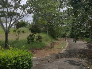 Terreno En Ventaen Esterillos Oeste, Parrita, Costa Rica, CR RAH: 18-737
