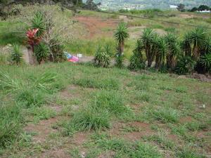 Terreno En Ventaen Orosi, Paraiso, Costa Rica, CR RAH: 18-764