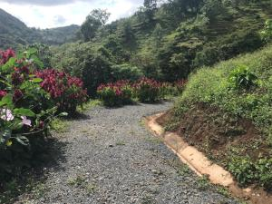 Terreno En Alquileren San Antonio, Puriscal, Costa Rica, CR RAH: 18-775