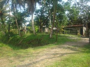 Terreno En Ventaen Guapiles, Guacimo, Costa Rica, CR RAH: 18-865