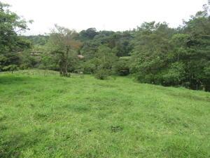 Terreno En Ventaen San Pedro, Vazquez De Coronado, Costa Rica, CR RAH: 18-893