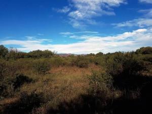 Terreno En Ventaen Guapiles, Pococi, Costa Rica, CR RAH: 18-958