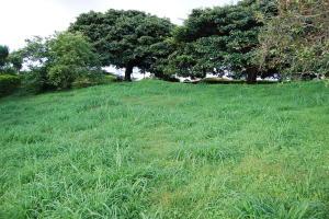 Terreno En Ventaen San Juan, La Union, Costa Rica, CR RAH: 19-308