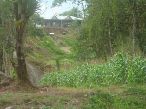 Terreno En Ventaen Guapiles, Limon, Costa Rica, CR RAH: 19-39