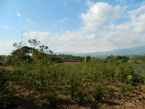 Terreno En Ventaen Chilamate, Poas, Costa Rica, CR RAH: 19-230