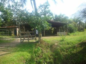 Terreno En Ventaen Guapiles, Guacimo, Costa Rica, CR RAH: 19-314