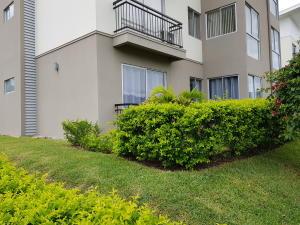 Apartamento En Alquileren Alajuela, Alajuela, Costa Rica, CR RAH: 19-554
