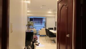Apartamento En Ventaen San Rafael Escazu, Escazu, Costa Rica, CR RAH: 19-788