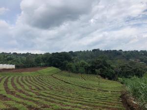 Terreno En Ventaen San Miguel, Grecia, Costa Rica, CR RAH: 19-780