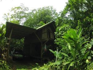Terreno En Ventaen Puerto Viejo, Talamanca, Costa Rica, CR RAH: 19-866