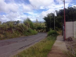 Terreno En Ventaen Dulce Nombre - Cartago, Cartago, Costa Rica, CR RAH: 19-983