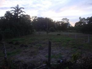 Terreno En Ventaen Guapiles, Pococi, Costa Rica, CR RAH: 19-1213
