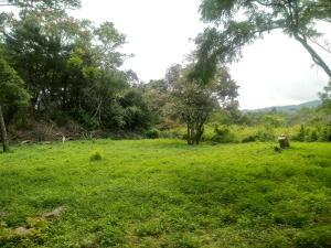 Terreno En Ventaen Rio Oro, Santa Ana, Costa Rica, CR RAH: 19-1260