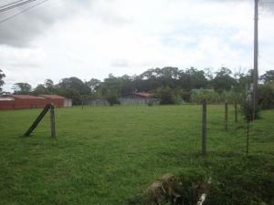 Terreno En Ventaen Guapiles, Pococi, Costa Rica, CR RAH: 19-1286